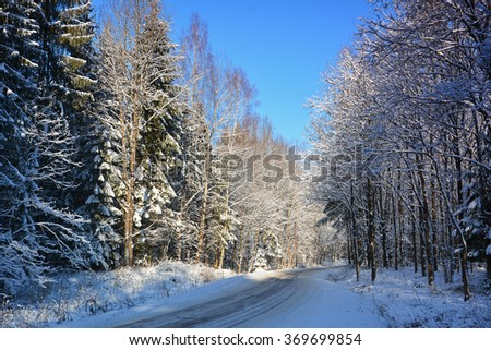 Road in winter forest full of snow.