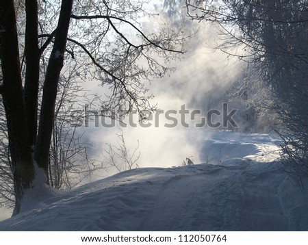 Road in winter forest with beautiful sun light.