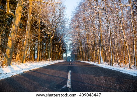 Road in winter with forest and snow.