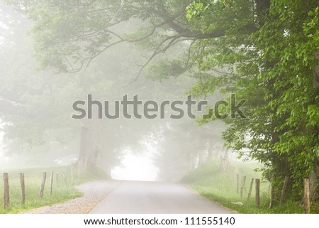 Road into the Fog - stock photo