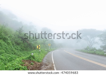 Road into the mist