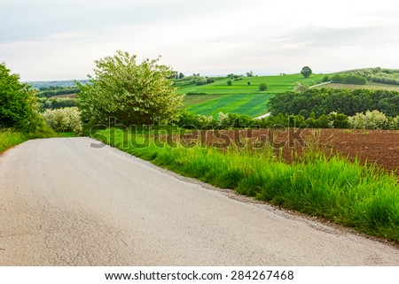 Road is going downhill trough fresh spring vegetation - stock photo