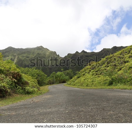 Road leading into a tropical area with mountains in background with clouds and blue sky