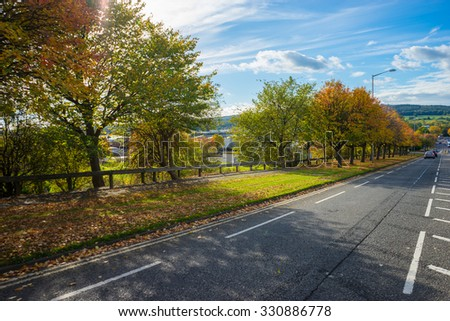 Road lined with autumn trees.  Cross hatching road marks line the centre of the road.