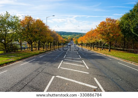 Road lined with autumn trees.  Cross hatching road marks line the centre of the road. - stock photo