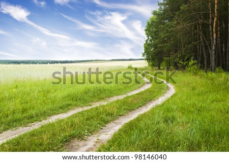Road near wood on a decline - stock photo