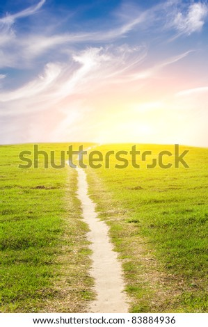 Road on green meadow to sunset. - stock photo