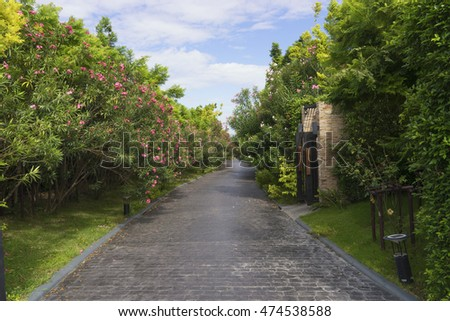 road on the garden and house with clear blue sky - can use to display on product