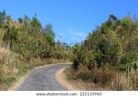 Road over hills in Bangladesh through green woods - stock photo