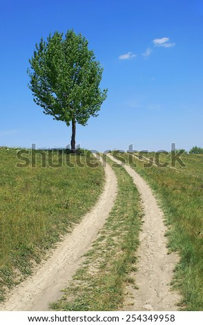 Road past the Lone Tree in Grassy Meadow over Blue Cloudy Sky, Vertical Shot - stock photo