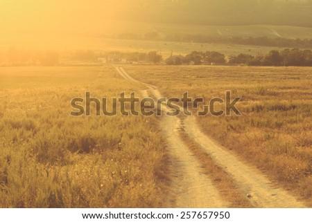 Road summer field sunset - stock photo