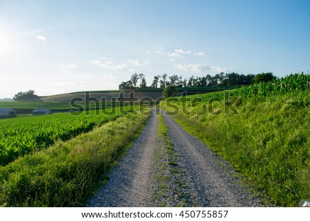 Road surrounded by farmland in Jefferson, Pennsylvania