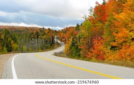 Road through Algonguin Park - stock photo