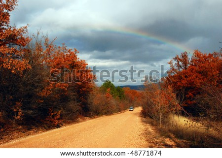 road through autumn forest and rainbow