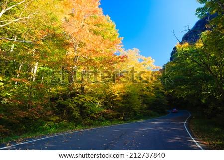 Road through autumn trees, Stowe Vermont, USA - stock photo