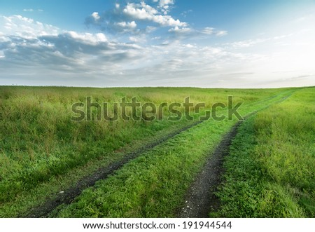 road through fields with green grass and blue sky with clouds, natural background - stock photo