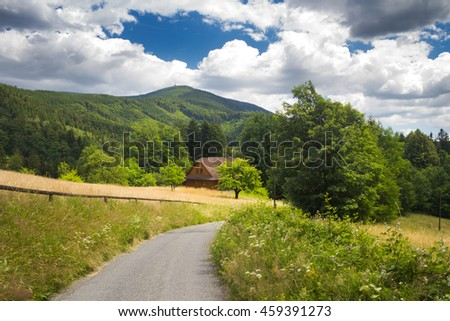 Road through meadow in mountain landscape with clear blue sky - Moravian-Silesian Beskydy