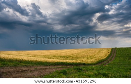 Road through the field of grass with low clouds - stock photo