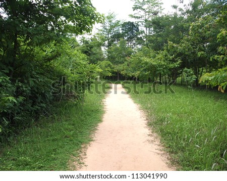 Road to Kbal Spean in Siem Reap, Cambodia