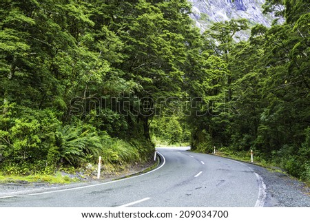 Road to Milford Sound in New Zeland - stock photo