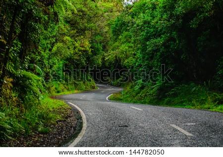 Road to Mount Egmont, New Zealand.Road to Mount Egmont, New Zealand. - stock photo