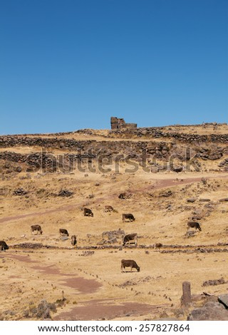 road to ruins of tower of Sillustani - pre-Incan burial tombs on the Lake Umayo near Puno, Peru - stock photo