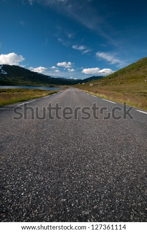Road to summer Nordkapp/Northcape, Norway, vertical image - stock photo