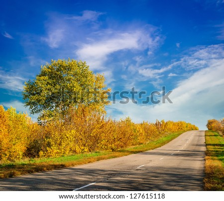 road to the hill among the trees - stock photo