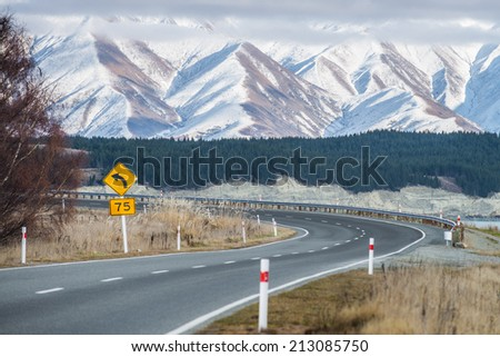 Road to the Southern Alps, New Zealand  - stock photo