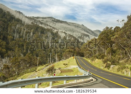 road to Thredbo skiing resort with view of regrowth from the destruction of fire in 2003