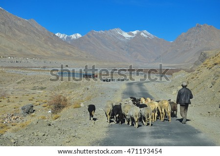 road towards ki village , in the spiti valley of himachal pradesh in india.