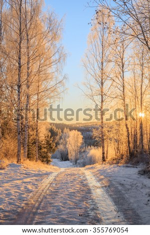road with ice and snow with trees during sunset
