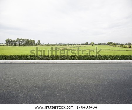 Roadside view and rice filed. - stock photo