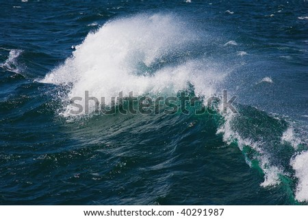 Roaring ocean wave curling under the  powerful force of nature