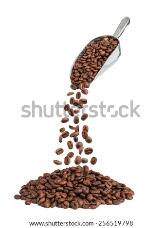 roasted coffee beans falling down from metal scoop isolated on white - stock photo