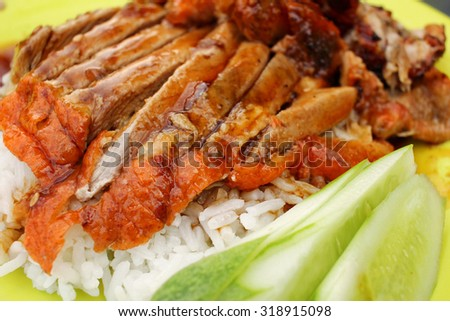 Roasted duck with rice - stock photo