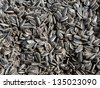 Roasted salted sunflower seeds background - stock photo