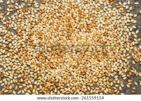 Roasted sesame seed on a black metal background - stock photo