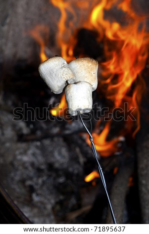 Roasting marshmallows on a stick over the open fire. - stock photo