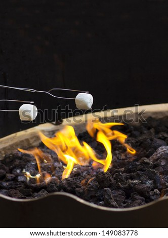 Roasting Marshmallows over the fire at night - stock photo