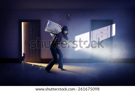 Robber in a mask with bags of money. - stock photo