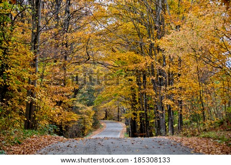 Robinson's Cemetery Road in Calais, Vermont winds through golden autumn trees.