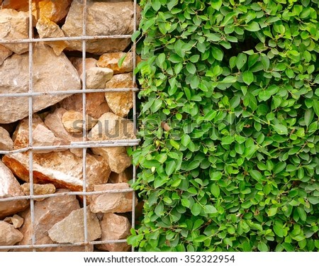 Rock and green background  - stock photo