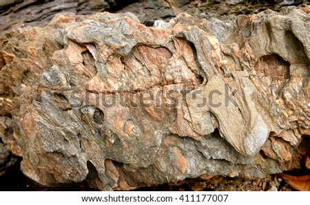 Rock and stone texture from nature near seaside in tropical country