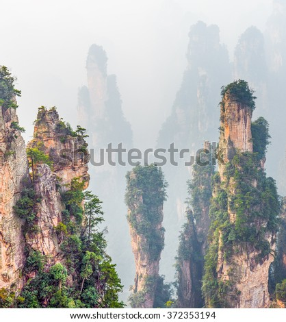 Rock column mountain (Avatar rocks). Zhangjiajie National Forest Park was officially recognized as a UNESCO World Heritage Site - China  - stock photo