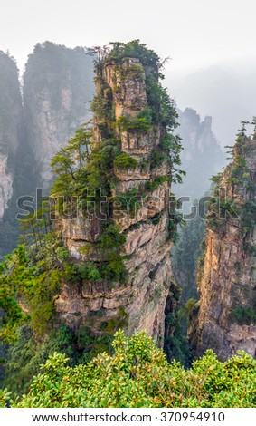 Rock column mountain . Zhangjiajie National Forest Park was officially recognized as a UNESCO World Heritage Site - China  - stock photo