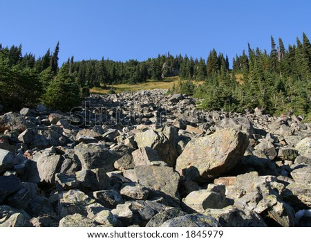 Rock fall in Callaghan Valley. British Columbia. Canada.