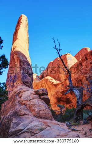 Rock formations in Arches National Park