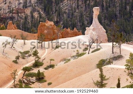 Rock formations in Bryce Canyon National Park, Utah, USA