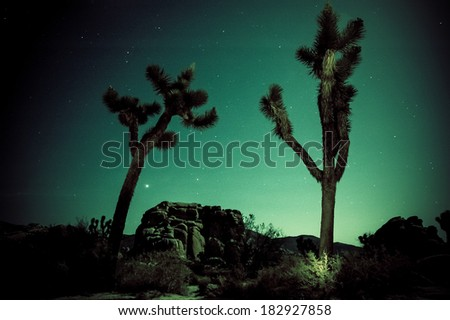 Rock formations photographed at night in Joshua Tree National Park.